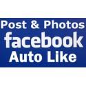 100-2000 FACEBOOK AUTOMATIC LIKES Für Lifetime