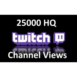 Twitch Channel Views  Buy