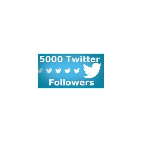 5000 Twitter Followers