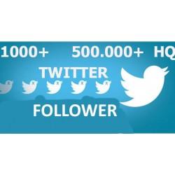 Buy Twitter Follower