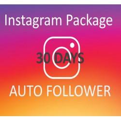 Buy automatic Instagram Follower 30 days
