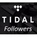 Tidal Followers Kaufen