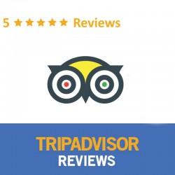 Buy TripAdvisor Reviews