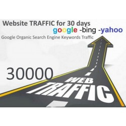 Get 30,000 Keywords Targeted Web Traffic Google Yahoo Bing