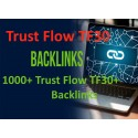 Buy 1000+ Trust Flow TF30 + Backlinks