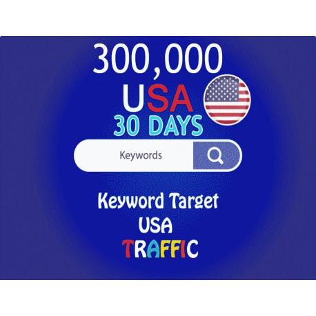 300,000 keyword target USA real traffic for 30 days