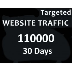 Webseite Traffic
