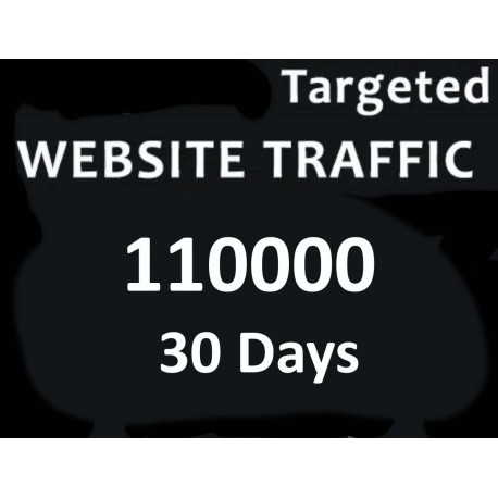 110,000+ TARGETED Human Traffic to your Website For 1 months